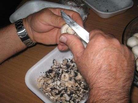 funghi puliti