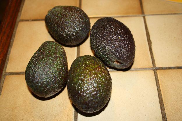 antipasto gamberi avocado san valentino 00