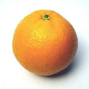 arancia biologica