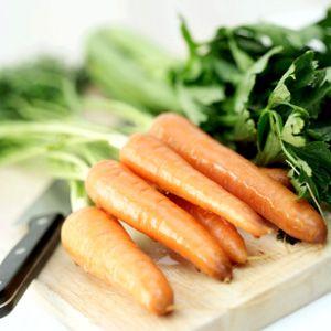 carote per conserva