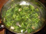 broccoli cotti