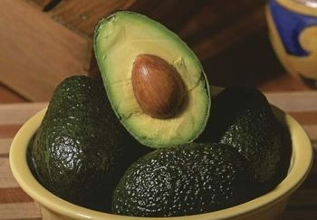 frutto avocado