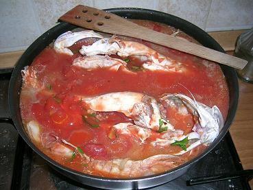 gallinella di mare e pomodori pelati