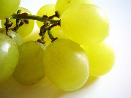 grappolo di uva per pasta