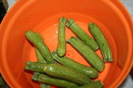 paccheri con verdure 01