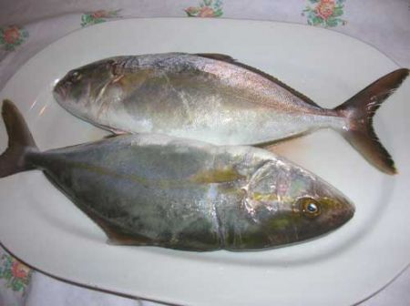 pesce pulito