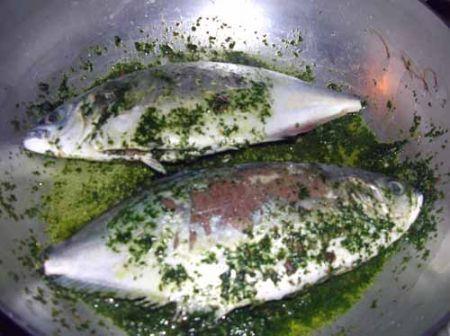 girate i pesci