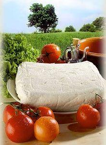 stracchino e pomodori
