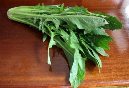 verdura catalogna