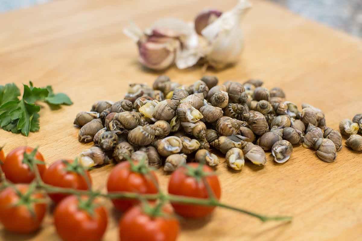 Maruzzelle, lumachine di mare con pomodoro