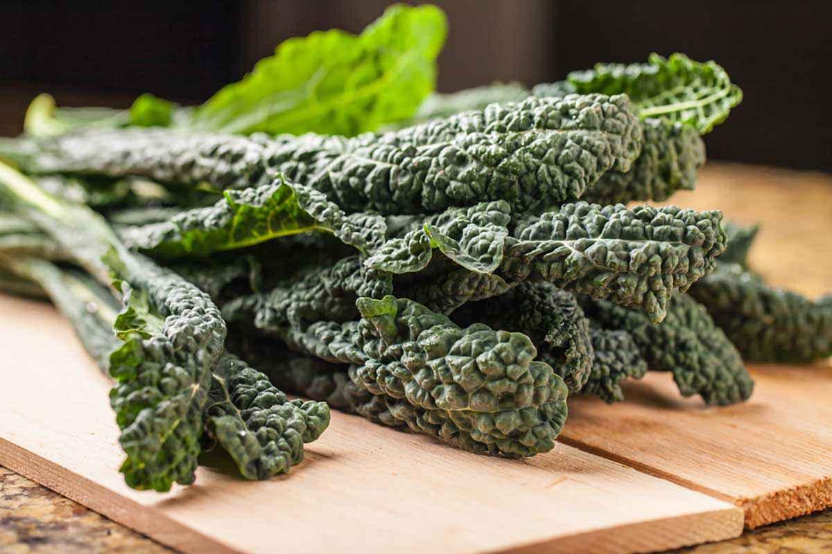 Come cucinare il cavolo nero: 12 ricette facili e sfiziose