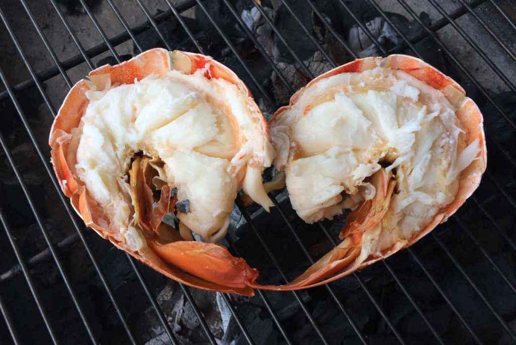 come cucinare aragosta bollita o grigliata