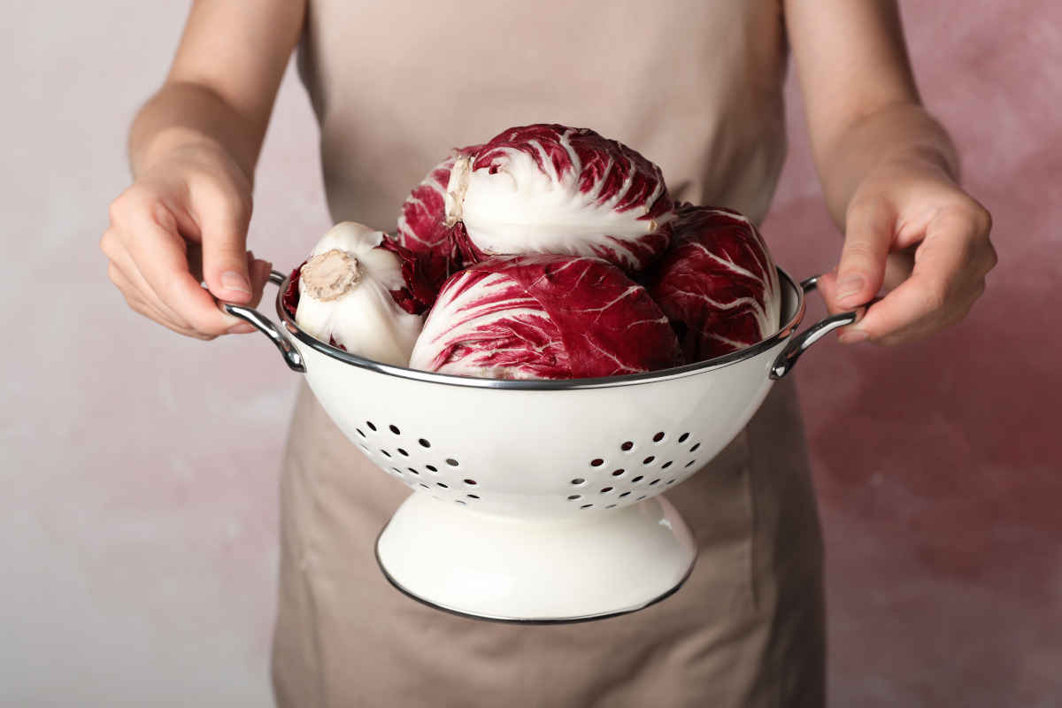 come cucinare il radicchio e ricette per le varie tipologie