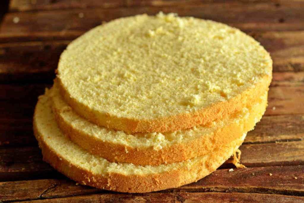 dischi di pan di spagna senza glutine