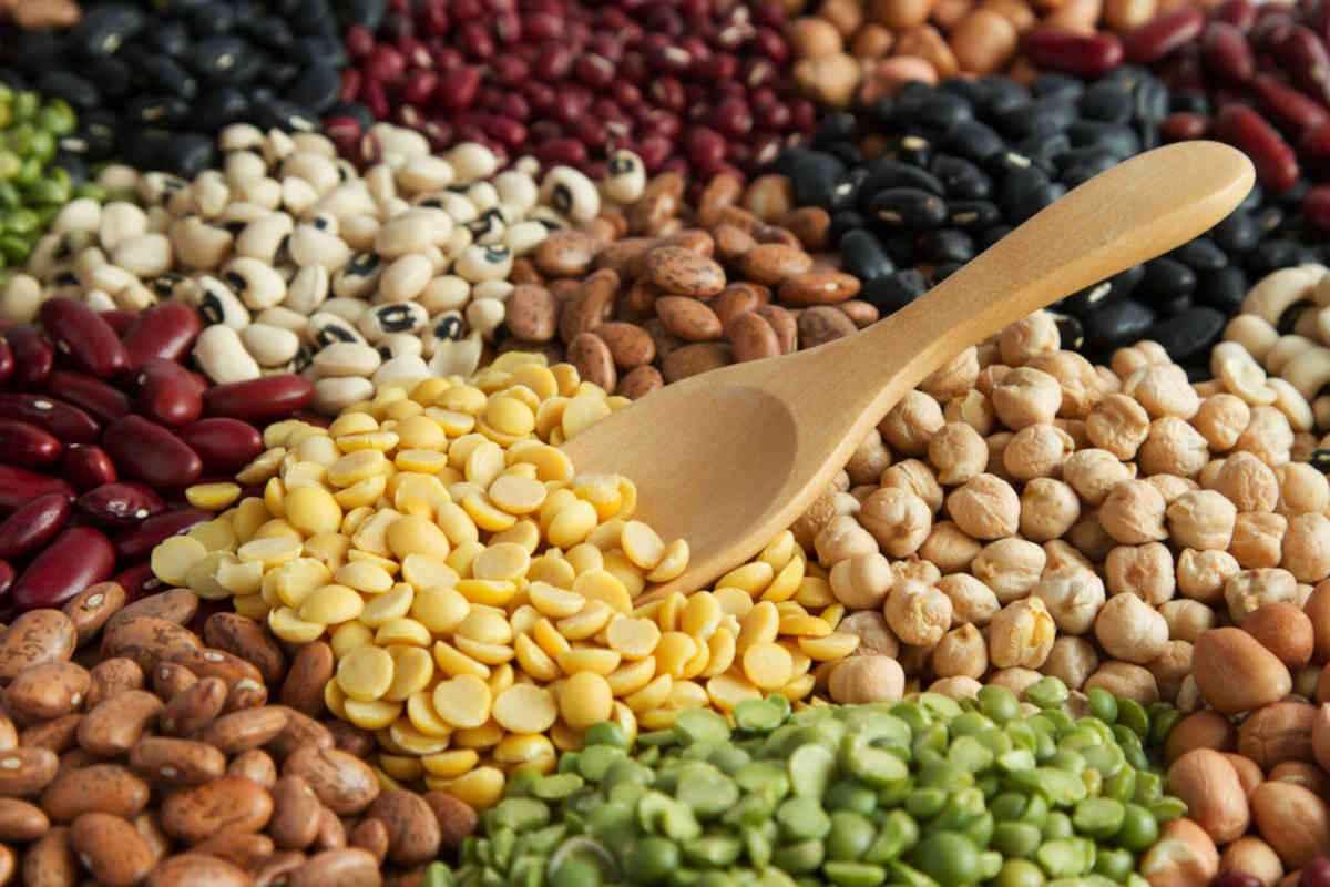 Giornata internazionale dei legumi: 20 ricette facili di primi, zuppe e secondi