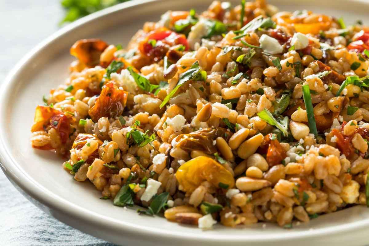 insalate di farro fredde sfiziose raccolta di ricette