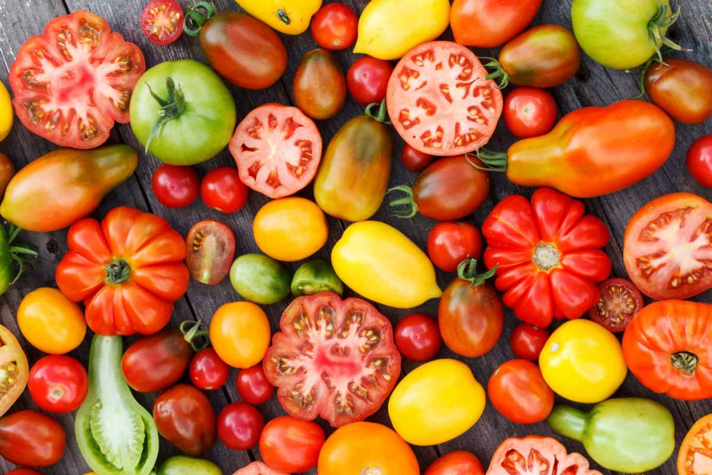 tipi di pomodori per insalata