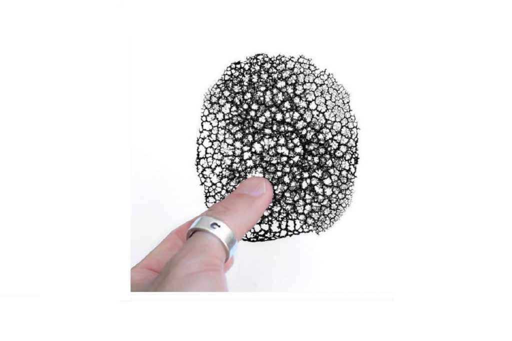 corallo nero con inchiostro di seppia
