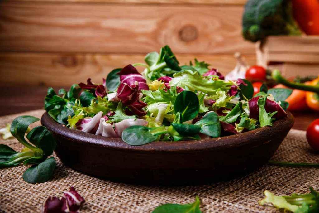 piatto di insalata con lattuga e radicchio ricette autunnali vegetariane