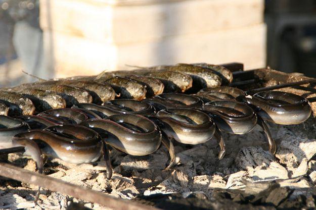 Anguille arrosto