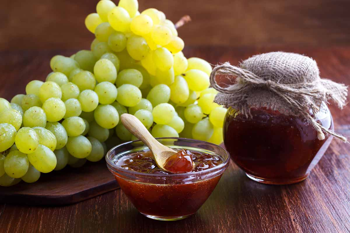 Ricetta della marmellata di uva preparata con il Bimby
