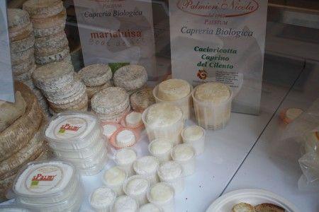 Cheese 2011 03