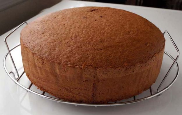 Pan di Spagna cacao