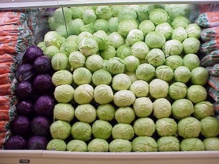 Verdure e ricette invernali