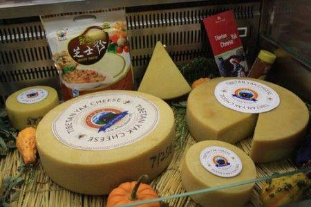formaggio yak tibet