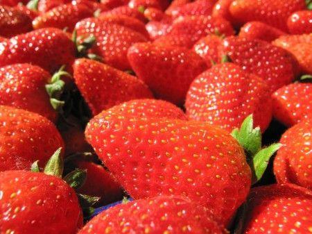5 ricette facili e veloci con le fragole