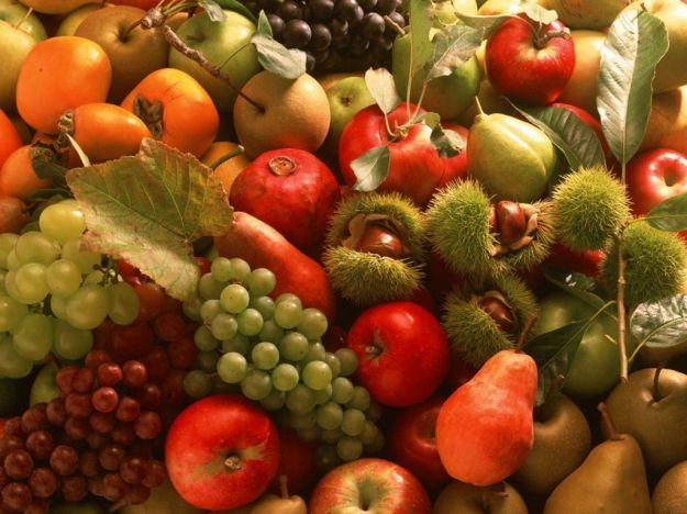 frutti-autunnali