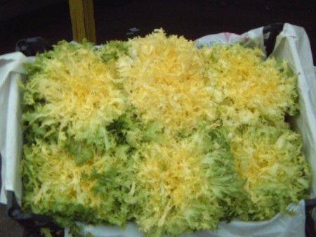 insalata indivia riccia uova prosciutto