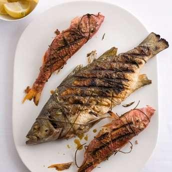 pesci grigliati