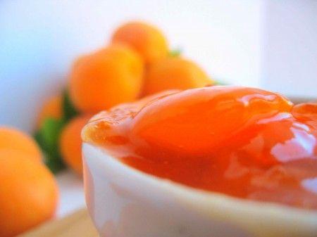 ricette conserve marmellata albicocche